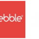 Pebble Accessories announces Diwali festive offer; launches True Wireless Ear Buds, best priced in the Market for Rs. 1999