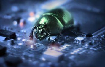 hackers-bug