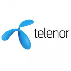 it voice Telenor Connexion logo