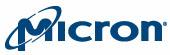 it voice micron logo