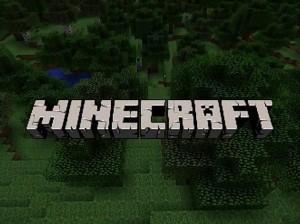 minecraft screenshot video