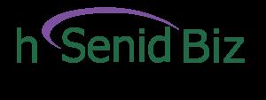 Logo-hSenid-Biz
