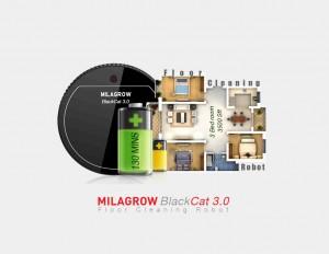 BlackCat3_01