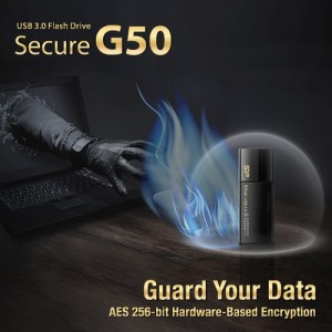 Guard Your Data_ Silicon