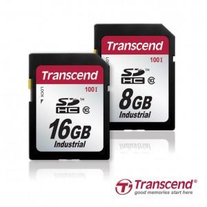 Transcend_SDHC100I