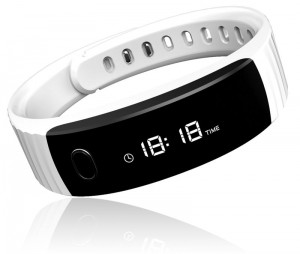 Intex-FitRist